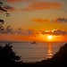 DSC_3152 Oregon Coast Pacific Ocean Sunset by anthonymaw