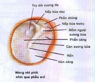 mang nhi phai