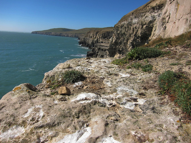 Swanage_Coast_31