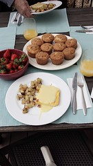 Easter brunch on the patio! Turkey Bacon and Thyme Egg Casserole with Hollandaise. #homecooking