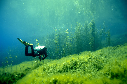 uw landscape underwater tech sony lakes scuba diving greece springs ioannina louros uwphotography vouliasta a55v
