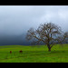 Enjoying our countryside by pendeho