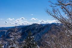 棒ノ嶺、有間山、大持山、小持山、蕎麦粒山を展望。。。直下の南十字路