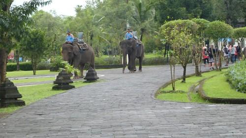 Yogyakarta-2-009