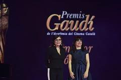 gala VII Premis Gaudí (29)