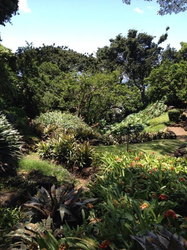 spalding house gardens