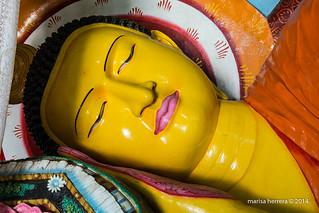 Sri Lanka. Anuradhapura. Abhayagiri Dagoba.