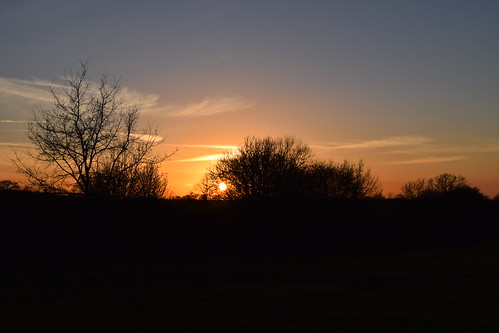 uk sunset suffolk hedgerow langham