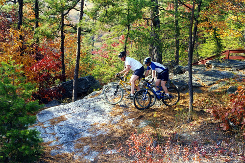 Mountain bikers overlooking a cliff amongst the coloful fall leaves