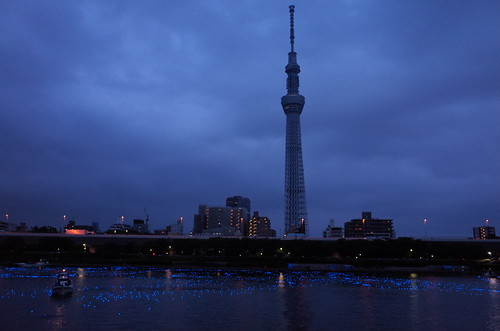 Tokyo Hotaru Light Symphony 2013-20