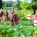 O.U.R. Ecovillage Garden Crew