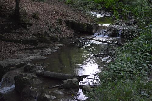 water creek forest woods hungary wasserfall falls wald foret ungarn chute bois kirándulás patak mecsek hongrie nyár tábor erdő túra 2013 július víz hegység vízesés hegymászás völgy péntek pénteki mecseki egyházközösségi gyermektábor óbányai