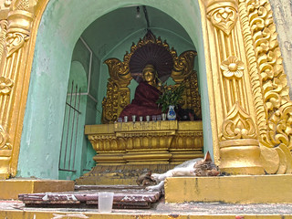 Image of  Sule Pagoda  near  Shwedagon Pagoda. travel cats architecture cat pagoda feline asia seasia southeastasia buddha yangon burma religion buddhism felines myanmar spirituality spiritual burmese rangoon sule sulepagoda