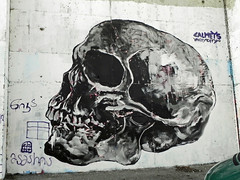 art, street art, sketch, painting, drawing, illustration, bone, skull,