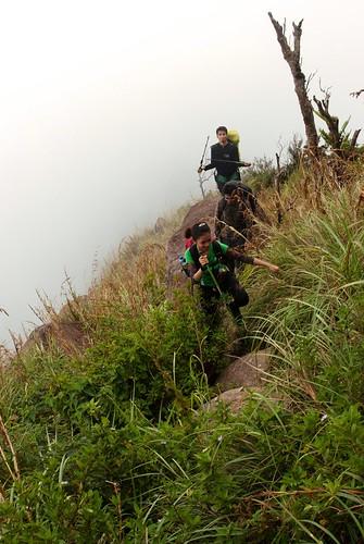 Mt Tarak