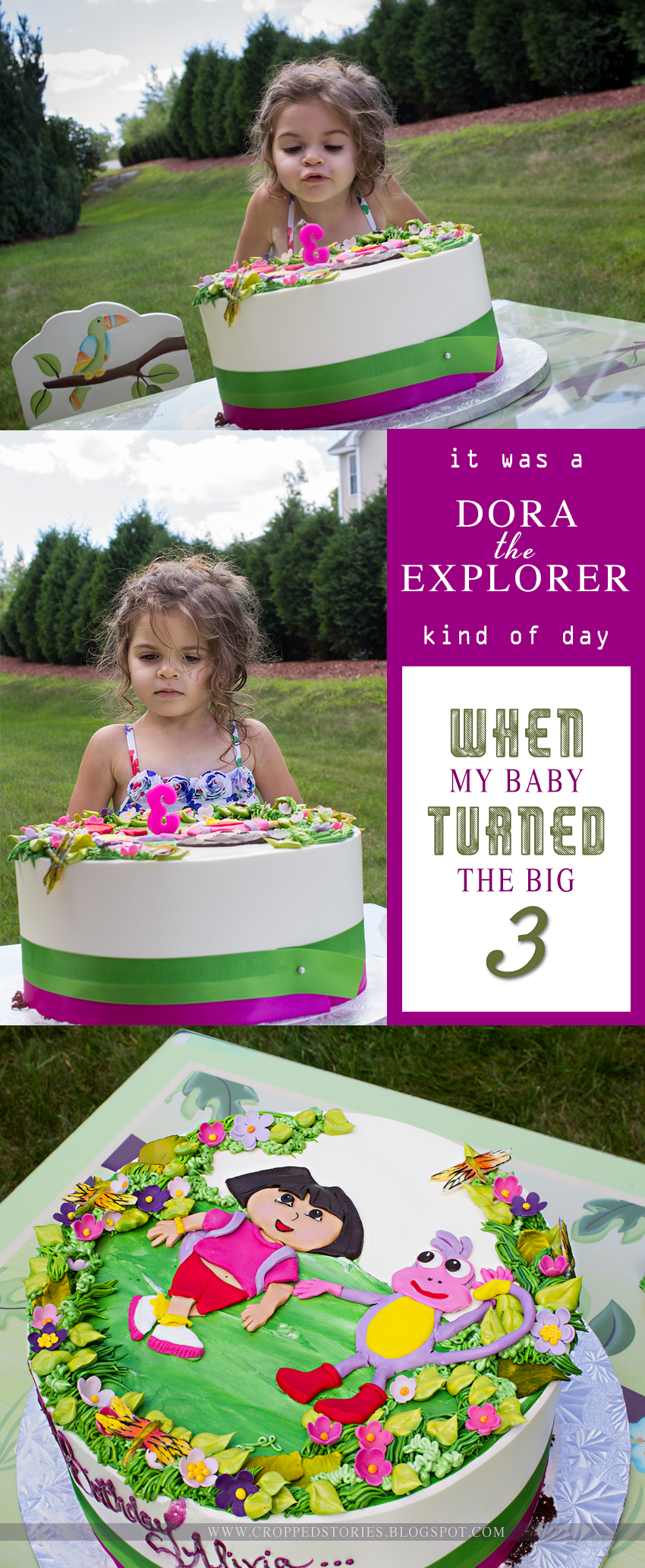 Livi's 3rd Dora Birthday Party