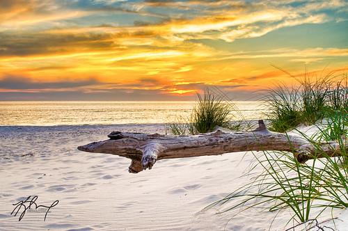 park camping sunset sky orange beach gulfofmexico st mexico fishing gulf unitedstates state florida dune driftwood peninsula hdr primitive portstjoe joeseph primitivecamping stjoesephpeninsulastatepark mygearandme thephotographyblog