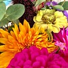 #farmersmarket #flowers