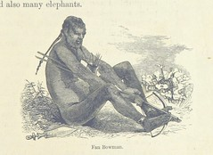 """British Library digitised image from page 131 of """"Explorations and adventures in Equatorial Africa; with accounts of the manners and customs of the people and of the chace of the gorilla, crocodile, leopard, elephant, hippopotamus and other animals. (Seco"""
