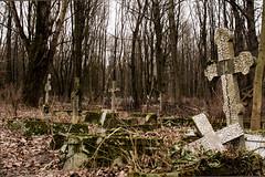 Cemetery002, Smolensky Cemetery