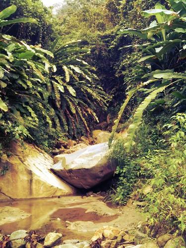 san gil bucaramanga velez colombie uploaded:by=flickrmobile flickriosapp:filter=iguana iguanafilter