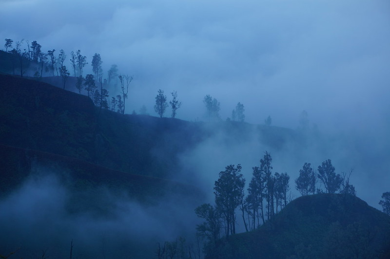 Morning mist on a trail to the Ijen crater