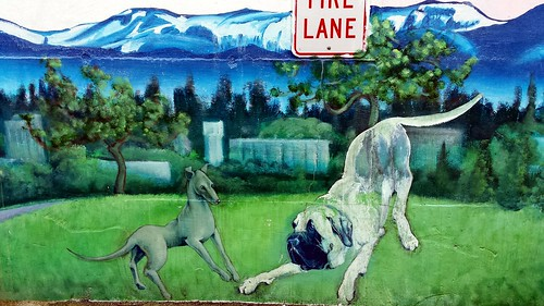 Dogs playing,gray dog, ghost dog, mural, Acces Emergency Animal Care Hospital, Lake City Way, Seattle, Washington , USA by Wonderlane