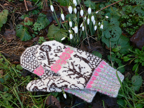 Secret Garden mittens by secrettrail