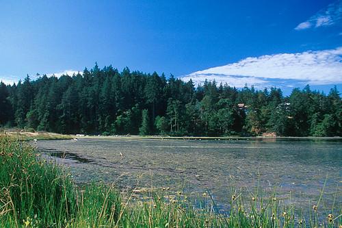 Albert Head Lagoon Wildlife Sanctuary, Metchosin, Victoria, Vancouver Island, British Columbia, Canada