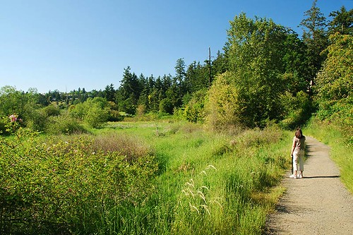 Rithet's Bog Conservation Area, Saanich, Victoria, Vancouver Island, British Columbia, Canada