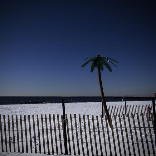 Beach Snow Carpet, Coney Island
