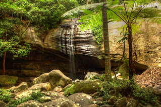 Buderim Falls, Sunshine Coast Queensland