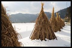 日本京都南丹市_美山雪祭.65