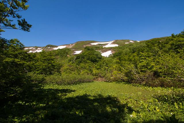 20160611-焼石岳-0274.jpg