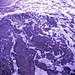 Small photo of Purple Surge