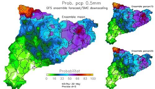 Mapa amb la probabilitat de superar el llindar de precipitació de 0.5 litres per metre quadrat en un dia; concretament el 30 de maig de 2013.