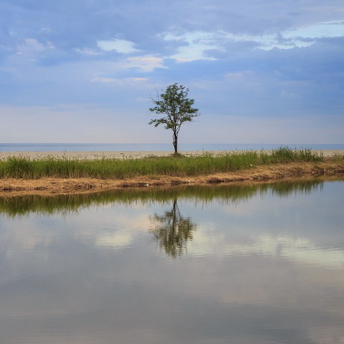 sea sky reflection tree green nature grass clouds river landscape is center greece more simplicity elegant simple rule less ef2470mmf28lusm thirds 6d
