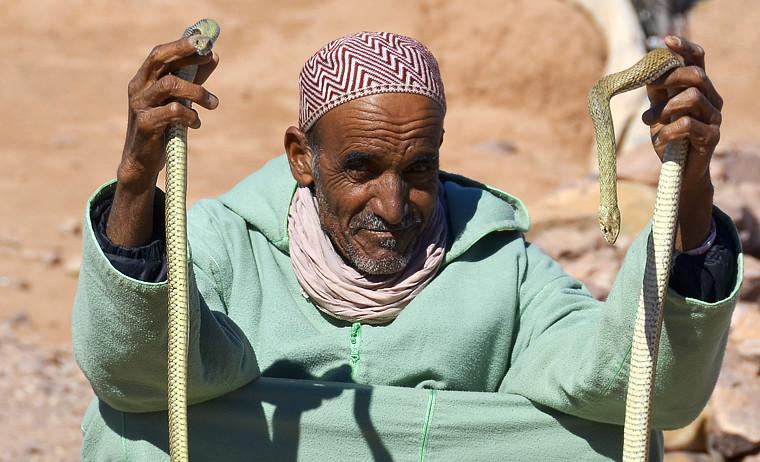 Anciano con serpientes en el margen de la carretera de Marruecos