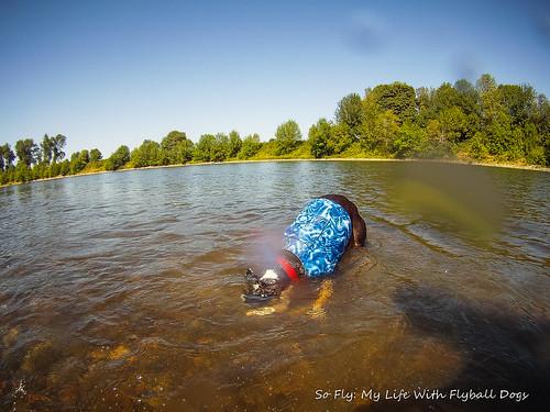 GoPro Under Water-6349