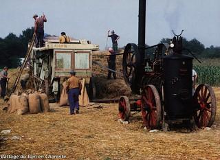 Battage du foin en Charentes