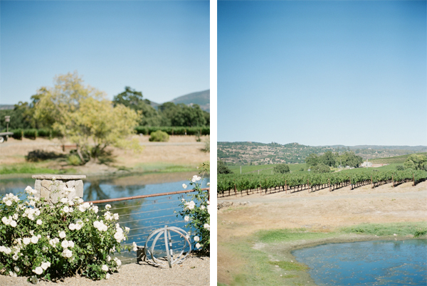 RYALE_NapaValley-036