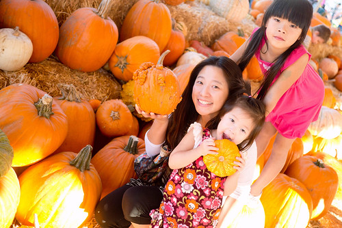 pumpkinpatch01