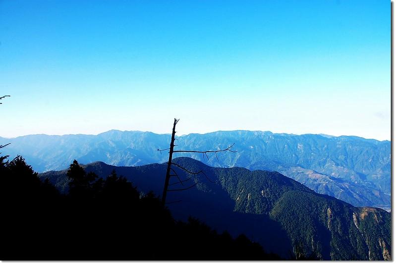 阿里山山脈(From 西巒步道)