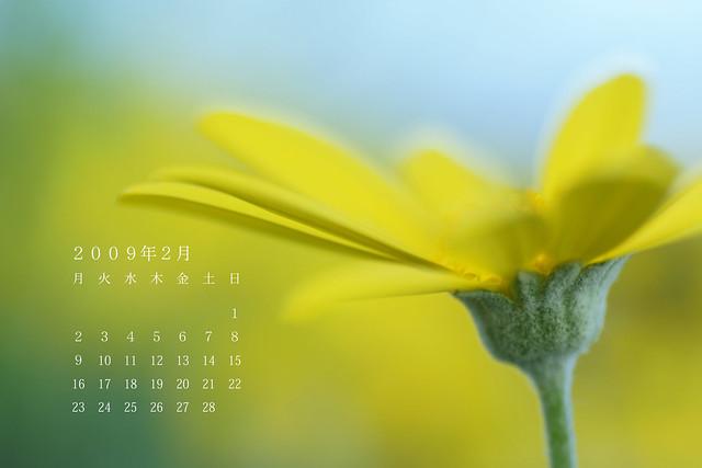 写真_2月カレンダー