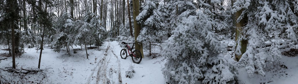 WinterWonderLand 2013