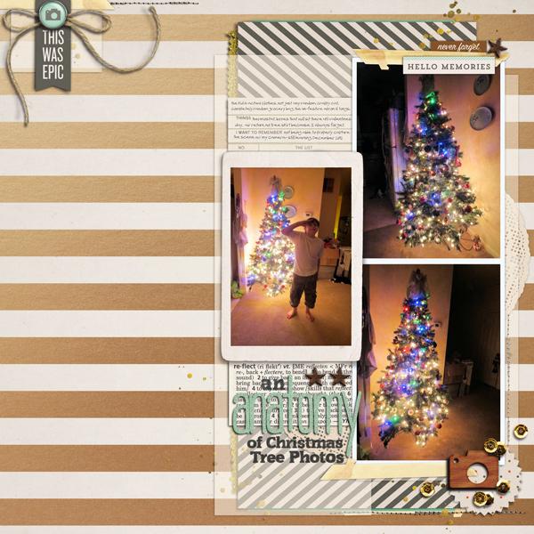 an anatomy of christmas tree phtos