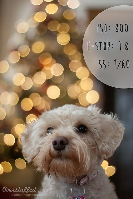 How to achieve Christmas Light bokeh in the background of a photo