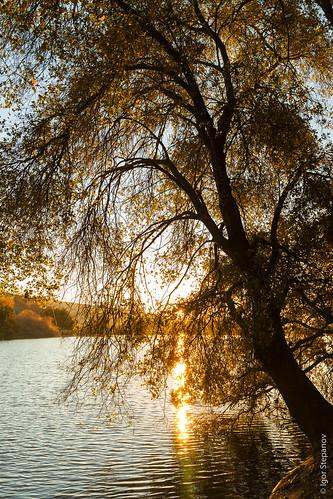 california travel usa nature sanjose 2013