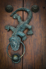 carving, wood, reptile, door knocker, iron,