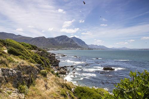 ocean hermanus southafrica rocks atlanticocean westerncape walkerbay kaapsefynbos